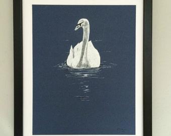 Swan, Bird Art, Original Ink Drawing