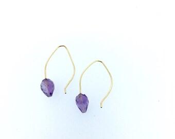Amethyst Drop Hook Earrings