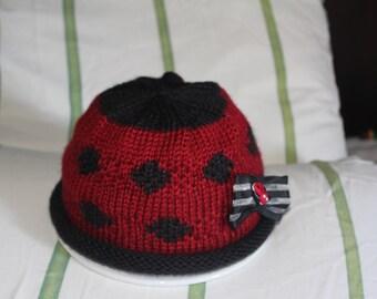 Sweet Ladybug Hat and Sweater Set