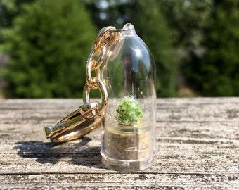 Live Cactus KeyChain / Mini Cactus Terrarium KeyChain/ Miniature Terrarium / Nature Jewelry Necklace