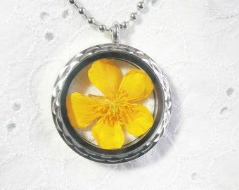 Medallion necklace with real buttercup , real yellow buttercup flower medallion , real flower necklace, yellow flower buttercup jewelry