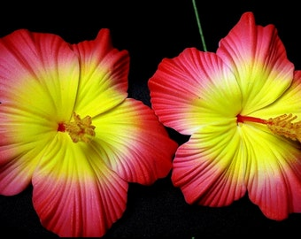 Red and yellow Hibiscus foam flower