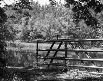 """Digital Download - Photograph - """"The Gate"""" in Black & White"""