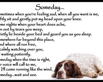 Liver and white Springer Spaniel Dog Memorial Magnetic Sympathy Card Gift
