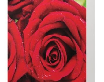 roses - red roses - red - birthday 5 x 7 greeting card