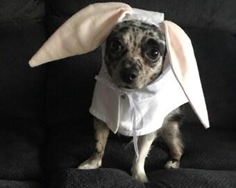 Dog Bunny Costume/Dog Easter Bunny Costume