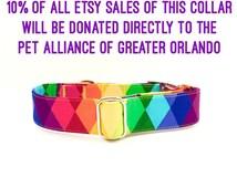 Pride dog collar, Prayers for Orlando. Rainbow dog collar, LGBTQ pride. Orlando fundraiser.