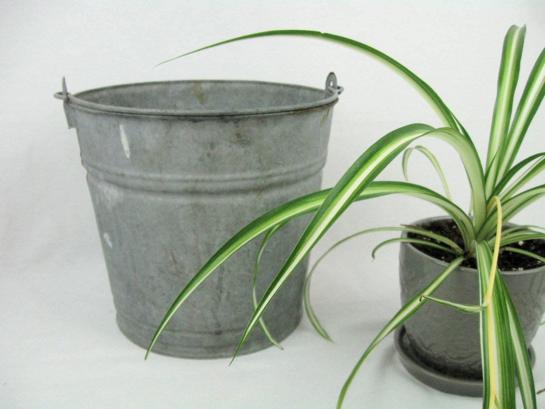 vintage galvanized metal pailvintage garden planter