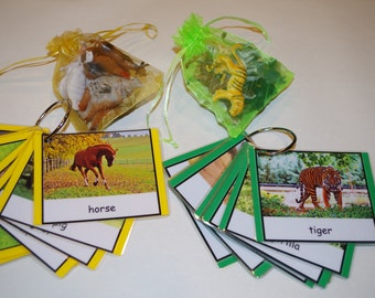 Animals or Insects matching activity--Montessori educational early learning materials