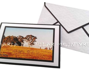 A Mob - Kangaroos Photo card, kangaroos card, animal card, animal photo, animal greeting card, maryborough postcard,Australia greeting card