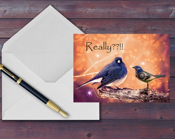 Funny Bird Card - Dark Eyed Junco - Psychedelic - Greeting Card-  - Blank Greeting Card - 5X7 - Birds - Bird Portrait