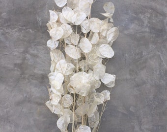 "Lunaria natural, Dried Flowers, Home Decor, Wedding Flowers - 40-42"" Tall"