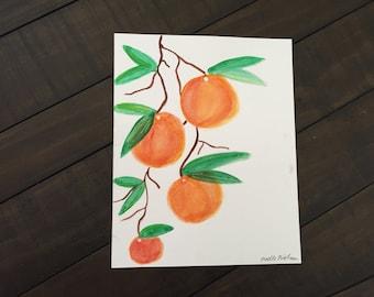 8 x 10 tangerines