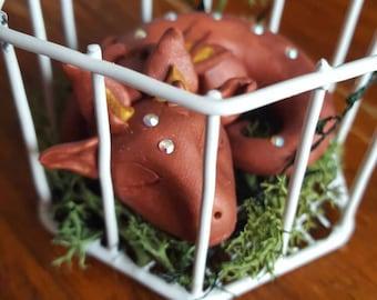 Sleeping Caged Baby Dragon
