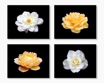 Flower Photographs Set of 4 Prints, Modern Living Room Decor, Flower Photograph, Modern Kitchen Wall Decor, Yellow, White, Set of 4.