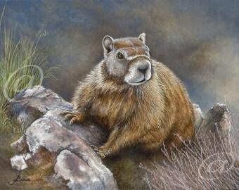 original oil painting, marmot, groundhog, animal, wildlife, rodent, canvas, fine art, realistic, portrait, rock chuck, Jan Brown