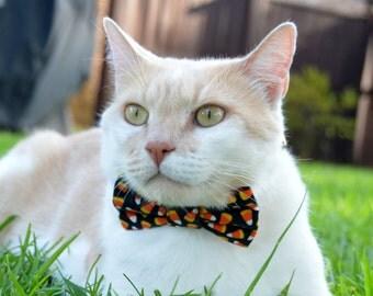 Halloween cat bow tie, Halloween cat collar, Halloween costume for cat, Candy corn cat collar, cat bow tie, Cat collar, kitten collar,