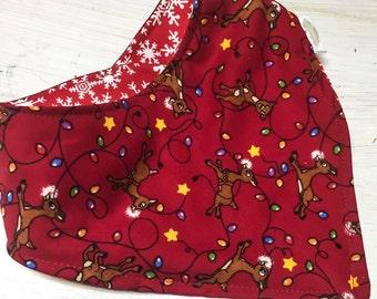 Rudolph Reversible Bib