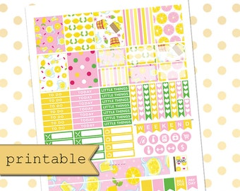PRINTABLE Planner Stickers for use with Erin Condren Life Planner/Pink Lemonade Weekly Planner Sticker Kit/Digital Download