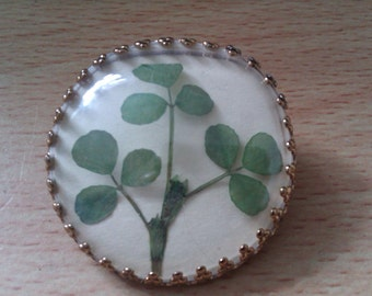 gold coloured clover brooch