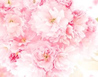 Flower Photography, Nature Photography, Garden Photography, Flower Photo, Flower Print, Fine Art Print, Wall Art, Cherry Blossom, Blossom