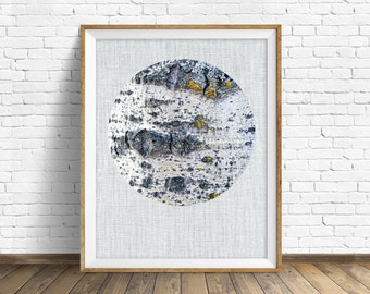 """nature photography, large art, large wall art, instant download, printable art, art print, abstract, decor, wall art, gray -""""Birch Tree"""""""