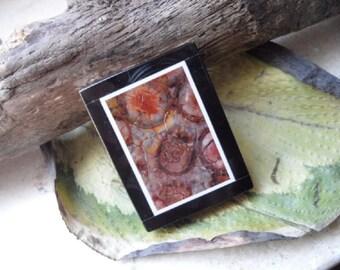 Japis, trailer, intarsia, amulet gemstone square