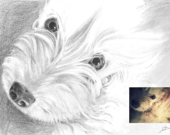 "Custom Pet Portrait from Photograph (5""x8"")"