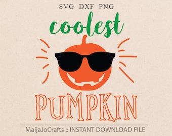 Pumpkin Svg Halloween SVG Thanksgiving svg files for Silhouette Cricut designs Baby funny svg Halloween svg cut files for Cricut downloads
