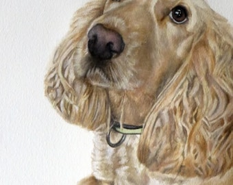 Custom Dog Portrait From Photograph A4 SAMPLE