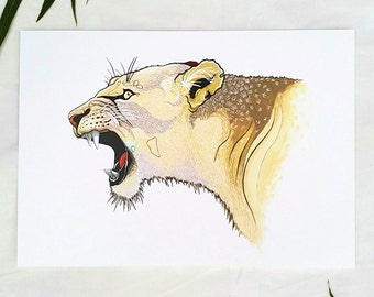 Lioness A4 Print