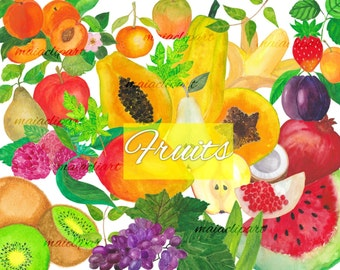 Watercolor fruits, commercial use, kitchen art, watercolor clipart, banana clipart, fruit logo, kiwi illustration,printable, tropical fruit