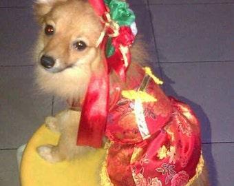 Cutie Chinese dress