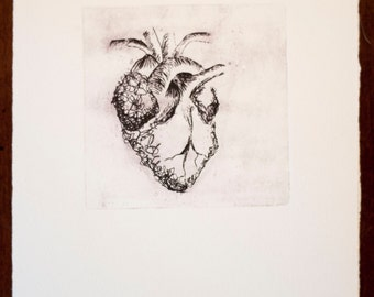 Anatomical Heart Intaglio Print