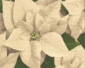 Gray poinsettia paper napkins, set of 4 decoupage napkin, Christmas flower serviette, Holidays decorated paper, winter decoupage paper, g198