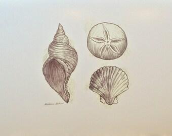 Seashell Beach Print