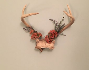 Hanging Modified Antlers with Flowers