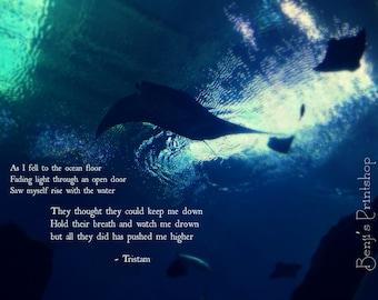 As I Fell to the Ocean Floor... by Tristan, Ocean, Stingrays, Beach, Original Photography