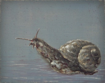 Original oil painting animals  snail