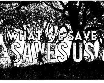 What We Save