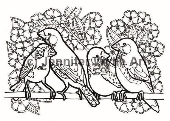 Zebra finches coloring page colouring page coloring book for Finch coloring page