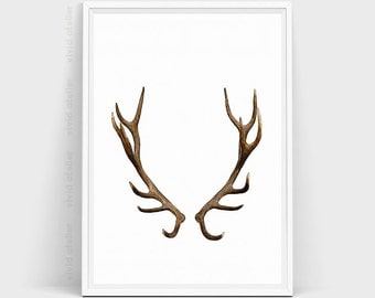 Deer Antlers, Deer Print, Deer Head, Deer Decor, Deer Art, Woodlands Decor, Deer Antler Decor, Wall Art Prints, Watercolor Print, Artwork