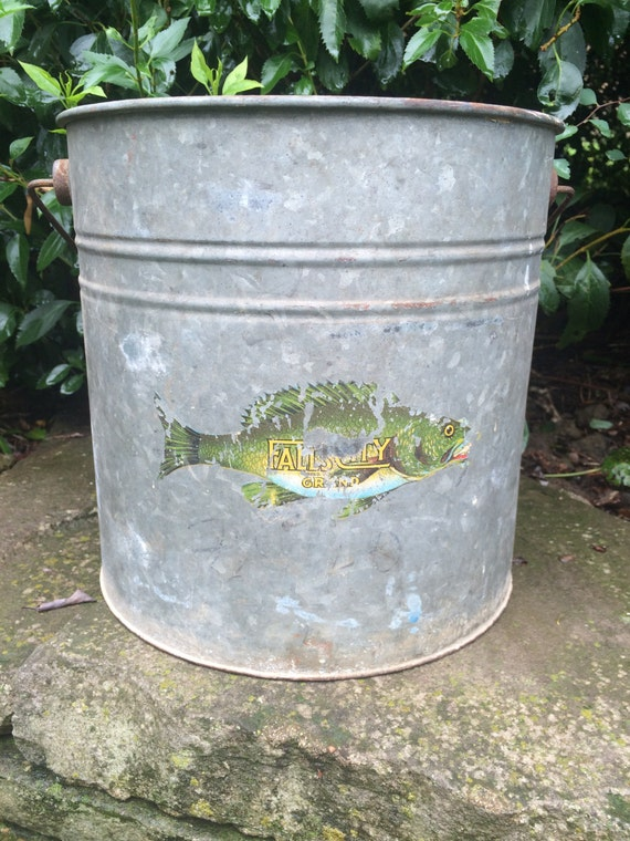 Minnows Fishing Buckets Pictures To Pin On Pinterest