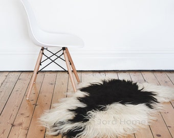 Ivory Rarebreed Black Tipped Sheepskin - Longhair Icelandic - The Leja