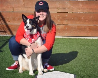 Cincinnati Reds Dog Bandana