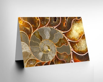 Macro Close Up Fossil Ammonite Shell Cool Blank Greetings Card CL1110