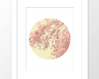 cherry blossom print, digital download, printable flower artwork, cherry blossom tree photo, girls room decor, nursery art, pink, spring