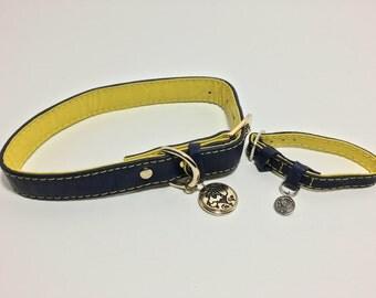 Dark blue & Yellow Collar