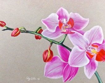 """Pink Orchid Pastel Giclee Print 9""""x12"""""""