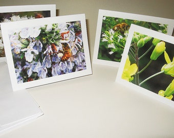 Bee Notecards, 8 with 2 each of 4 designs, Bee Cards, Timeless Relationship Notecard Set, Bee on Flower, Gift for Beekeeper, Bee Photographs